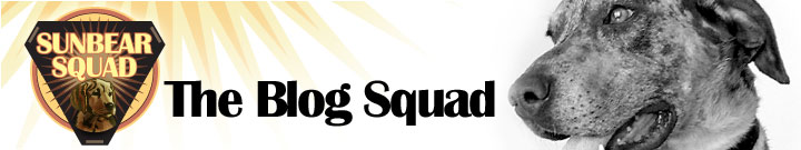 Sunbear Squad: The Blog Squad!