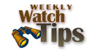 Watch Tip