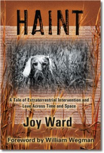 Haint cover