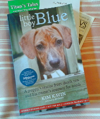 Little Boy Blue cover image